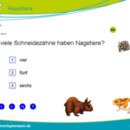 Nagetiere (Multiple-Choice)